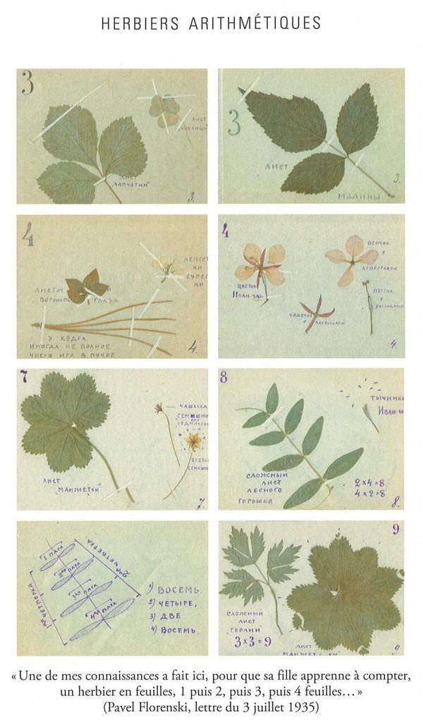 Herbiers arithmétiques